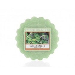 WILD MINT VOSK DO AROMALAMPY