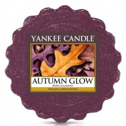 AUTUMN GLOW VOSK DO AROMALAMPY