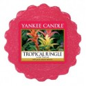 TROPICAL JUNGLE VOSK DO AROMALAMPY