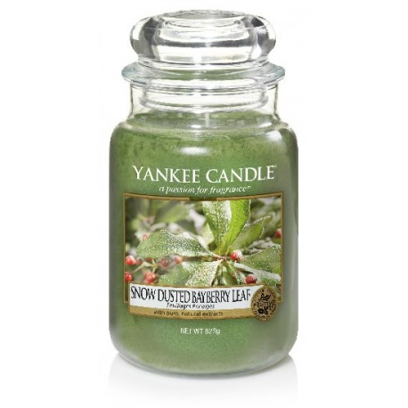 YANKEE CANDLE SNOW-DUSTED BAYBERRY LEAF CLASSIC VELKÝ